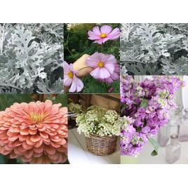 Virágmag Kollekció - Púder MIX