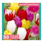 Triumph Tulipán Mix - 50 db