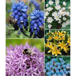 """""""Bee Happy"""" - """"Méhek kedvence"""" Kollekció"""