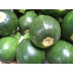 Kerek Zöld Cukkini