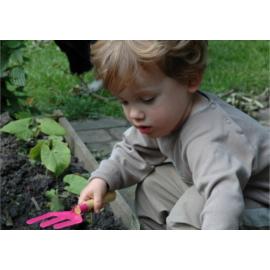 Gyerekek kertje